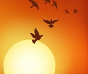 sunset under birds vectors graphic