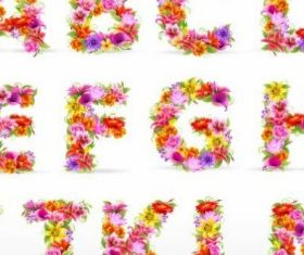 beautiful flowers and letters 02 vector set
