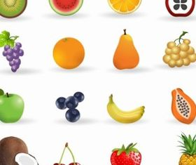 Fruit icon set shiny vector
