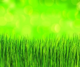 green grass background vectors