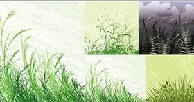 grass material vectors graphics