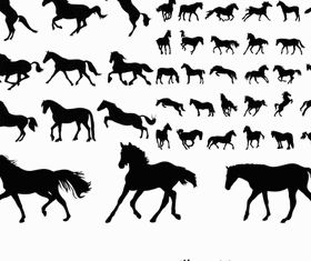 Horses Silhouettes 2 Illustration vector