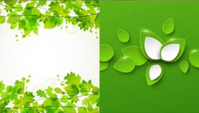 Backgrounds with Leaves vector graphics