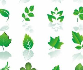 Leaf design element set vector