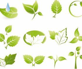 Green leaf icons vectors