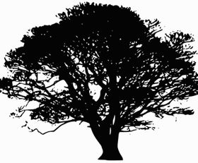 Tree Silhouettes clip art vectors material