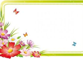 beautiful flowers and lace 05 set vector