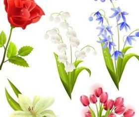 flower beautiful 5 vector graphics
