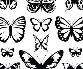 Silhouettes butterflies design vectors