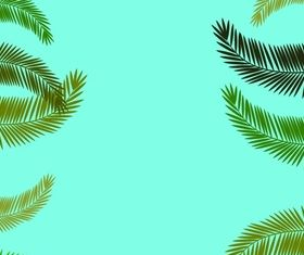 Fern leaf frames vector