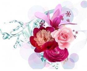 Flower graphic vector