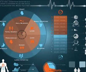 Medical Infographics Elements 2 vectors graphics