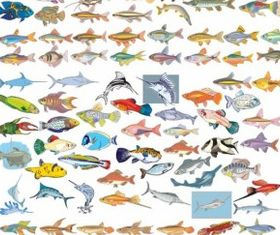 Collection Fish vector