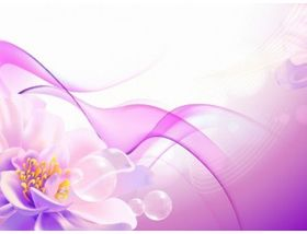 Flower Pink Background creative vector