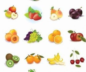 Fruits Vector Graphics Design