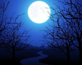 Moonlight Trees Vector background