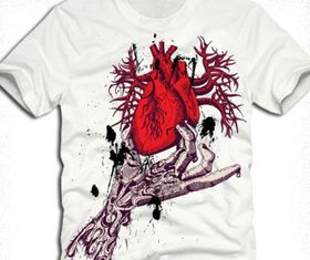 anatomical red heart with vector