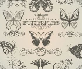 Butterfly pattern 1 vector set