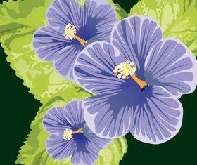 Floral background 39 set vector