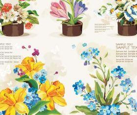 Pots flowers vector