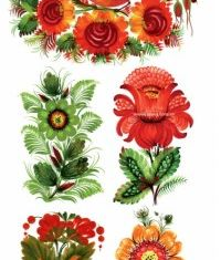 Handpainted floral decoration style Illustration vector