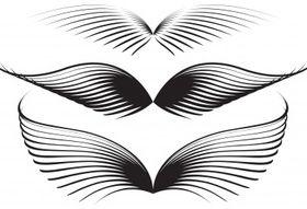 Wing graphics vector design