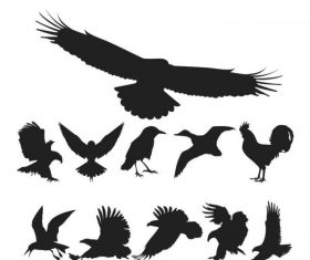 Birds silhouette pack free cdr s art vector