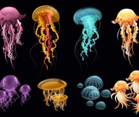 Jellyfish icons colorful modern illustration vector