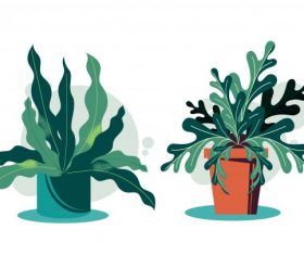 Decorative houseplant icons colored classical vector