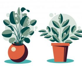 Houseplant icons colored flat vector