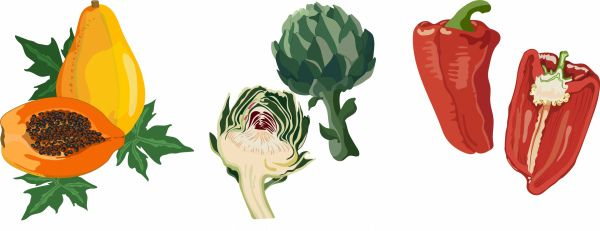 Vegetables fruits icons colored classical flat handdrawn vector
