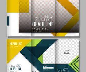 Brochure templates modern elegant colorful bright decor vector