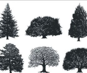 A monochrome tree free cdr vector