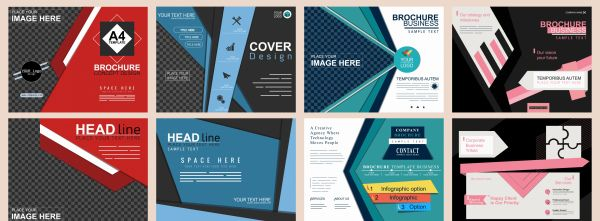 Corporate brochures collection elegant colored modern abstract decor vector