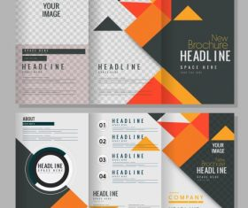 Brochure templates colorful geometric trifold vector