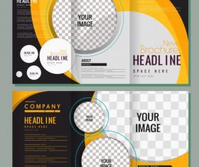Corporate brochures checkered vector