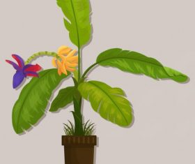 Decorative plant banana colored vectors material
