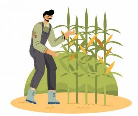 Farming work painting farmer corn plantation vector