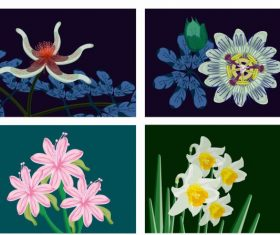 Botany background templates colorful classical vector design