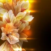 Link toBrilliant petal background vector 04