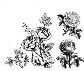 Hand draw Flower vector 01