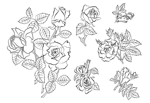 Hand draw Flower vector 03