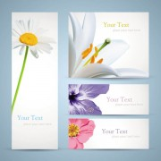Link toFree vector with flowers banner 01