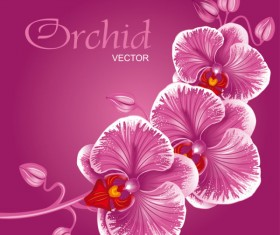 Set Exquisite with Flowers background free vector 01