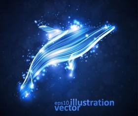 Transparent Dolphin vector Illustration 02