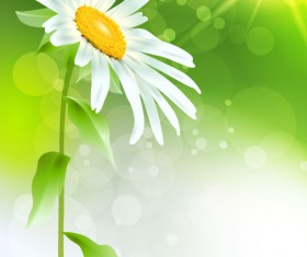 Bright with Flowers free vector 04