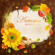 Link toFlowers & leaf vector photo frame 06