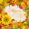 Flowers & Leaf vector Photo Frame 07