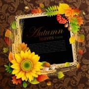 Link toFlowers & leaf vector photo frame 08