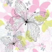 Link toSet of butterfly vector 02
